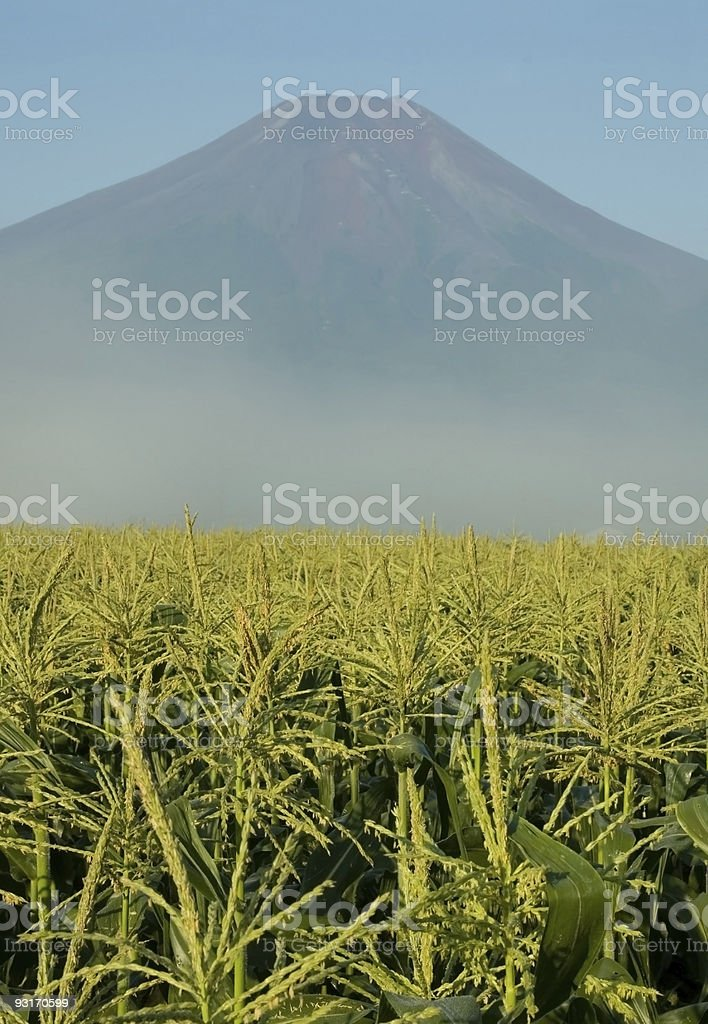 Mount Fuji in Iowa stock photo
