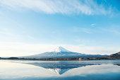 富士山を桜