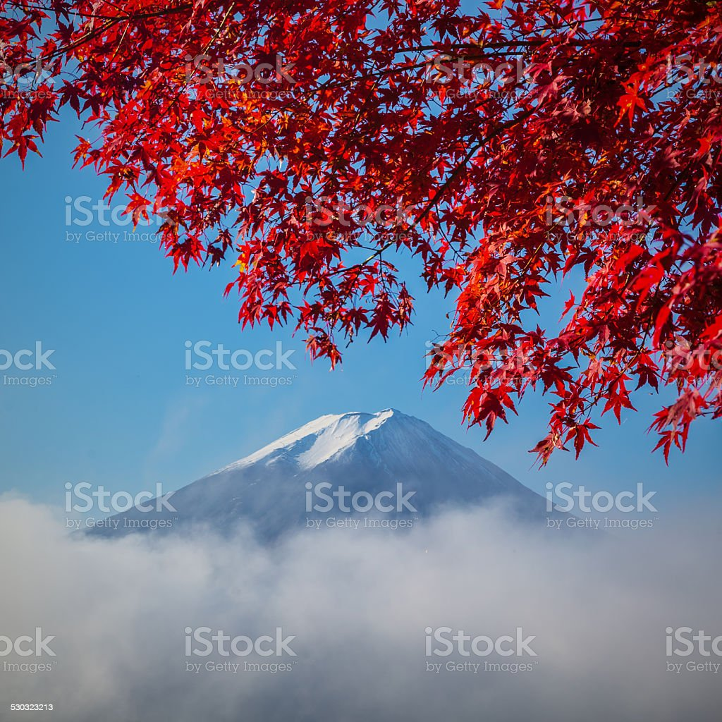Mount Fuji with autumn colors stock photo