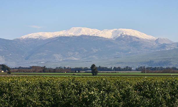 Mount Hermon stock photo