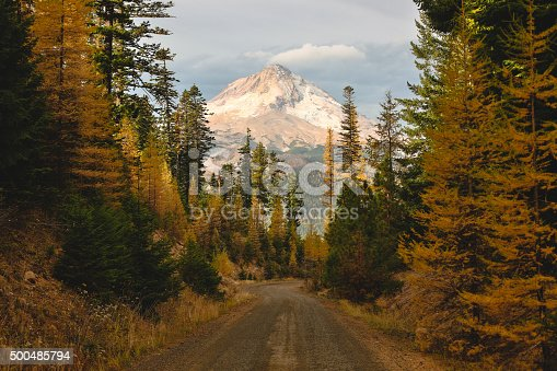 Beautiful scene from the mount hood national forest. Mount Hood is Oregon's crown jewel of beauty located just 45 minutes east of Portland. This image is perfect for representing your Pacific NW brand.