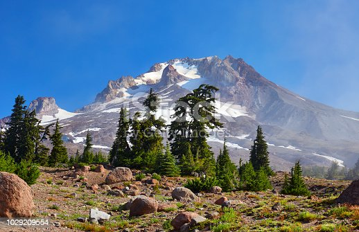 A view of Mount Hood, Oregon from the famous Timberline Trail that goes around the iconic peak