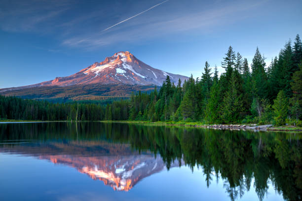 Mount Hood, Oregon Mount Hood, Oregon reflected in Trillium Lake. mt hood stock pictures, royalty-free photos & images