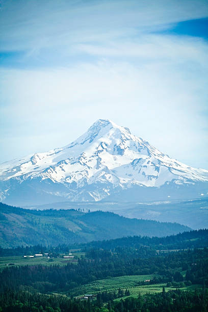 Mount Hood, Oregon State Beautiful Mt. Hood, taken from the Washington side of the Columbia river.  Beautiful blue sky; vertical with copy space. hood river valley stock pictures, royalty-free photos & images