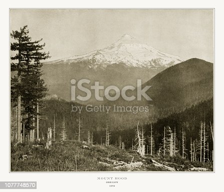 Antique American Photograph: Mount Hood, Oregon, United States, 1893: Original edition from my own archives. Copyright has expired on this artwork. Digitally restored.