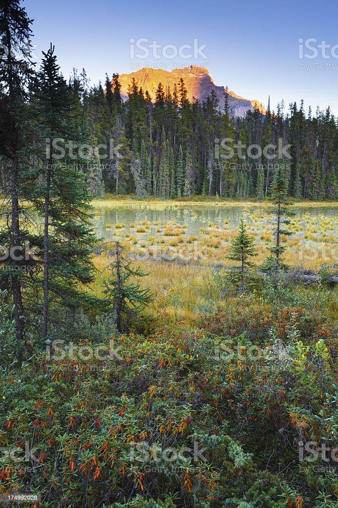 Mount Kerkeslin and Marsh royalty-free stock photo