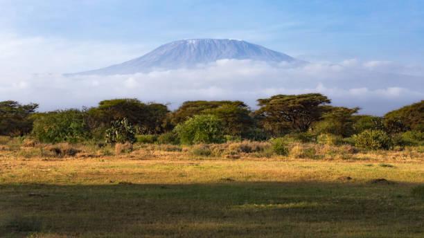 Mont Kilimandjaro - Parc national Amboseli - Kenya - Photo