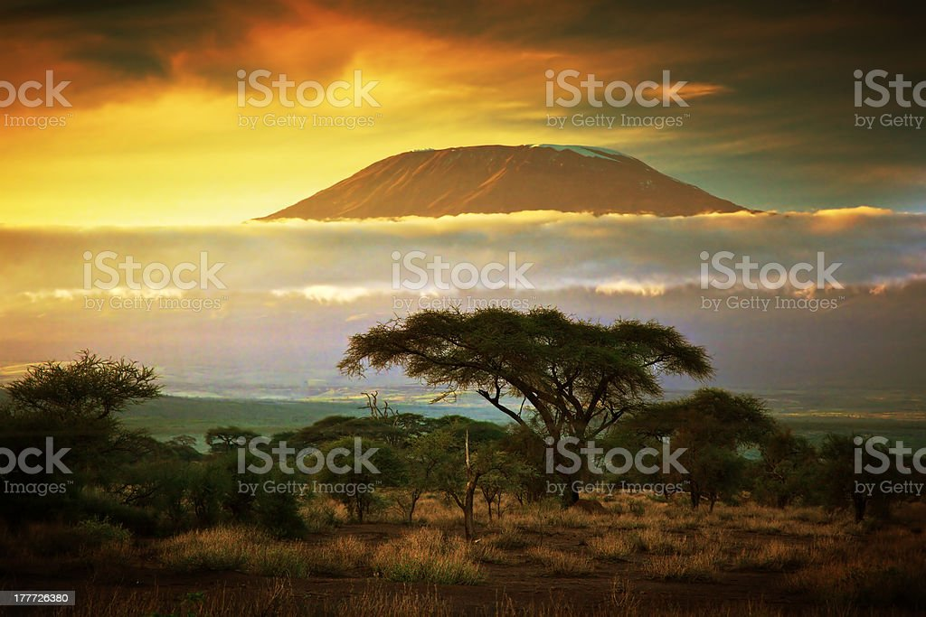 Mount Kilimanjaro. Savanna in Amboseli, Kenya stock photo