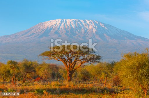 Mount Kilimanjaro with Acacia and Village - High Dynamic Range Imaging