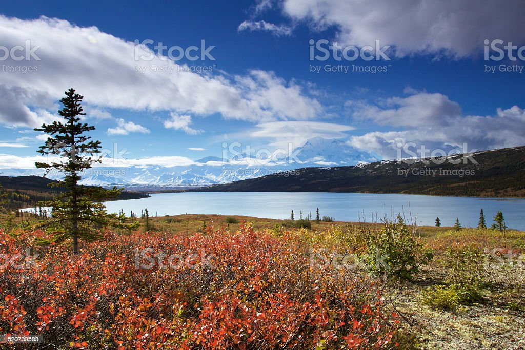 Mount McKinley from Wonder Lake with colourful landscape stock photo