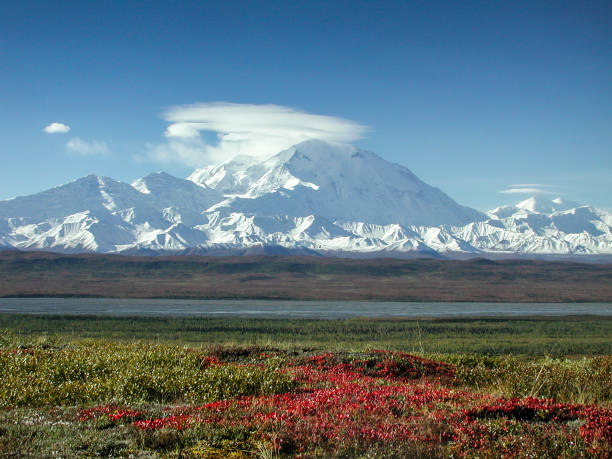 mount mckinley in the fall with clouds and red tundra - tundra imagens e fotografias de stock