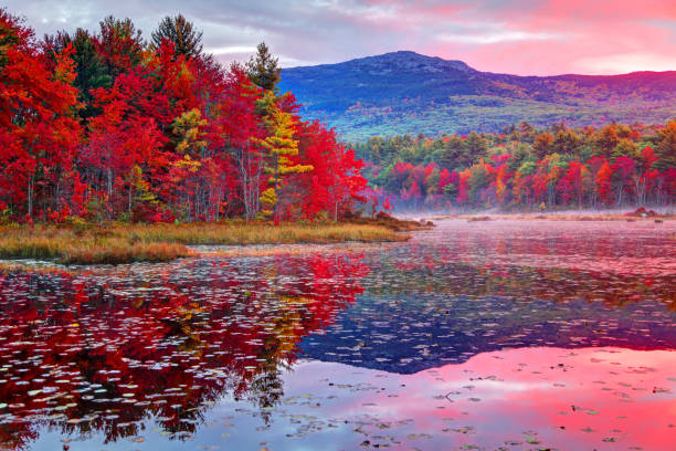 mount monadnock in de herfst - new hampshire stockfoto's en -beelden