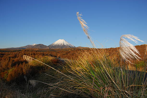 mount ngauruhoe in new zealand - nzgmw2017 stock pictures, royalty-free photos & images