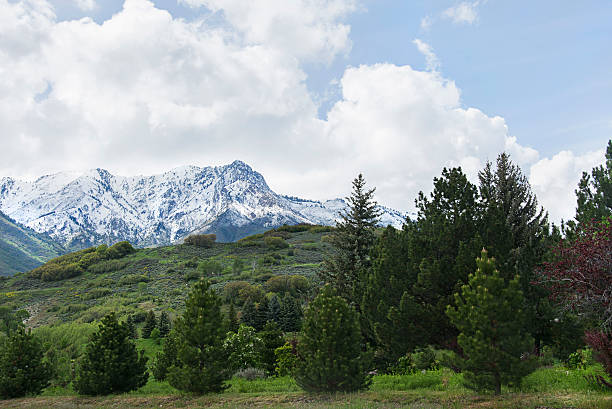 Mount Ogden in the wasatch mountains stock photo