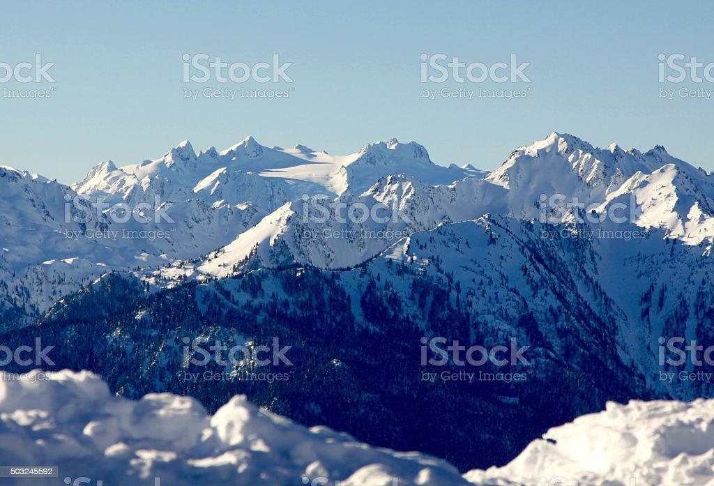 Mount Olympus und die robuste Olympic Mountains. – Foto