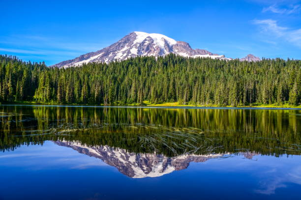Mount Rainier and Reflection Lake, Washington-USA Mt Rainier National Park mt rainier stock pictures, royalty-free photos & images