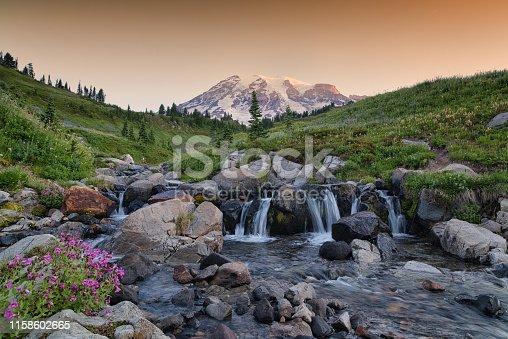 Skyline Trail, Mt Rainier