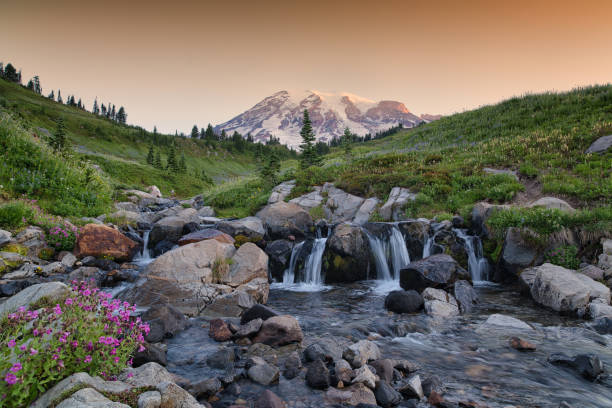 Mount Rainier at Dawn stock photo