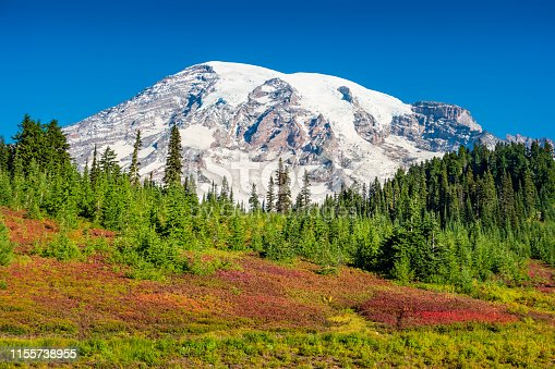 Stock photograph of Mount Rainier at Paradise in Washington, USA during an autumn sunny day.