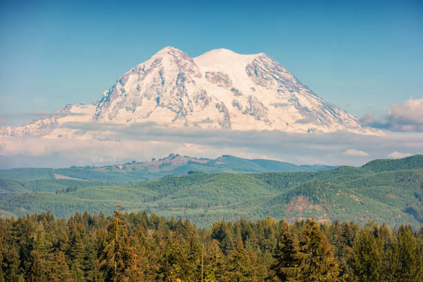 Mount Rainier in Washington USA Stock photograph of snowcapped Mount Rainier in Washington, USA on a sunny day. mt rainier stock pictures, royalty-free photos & images