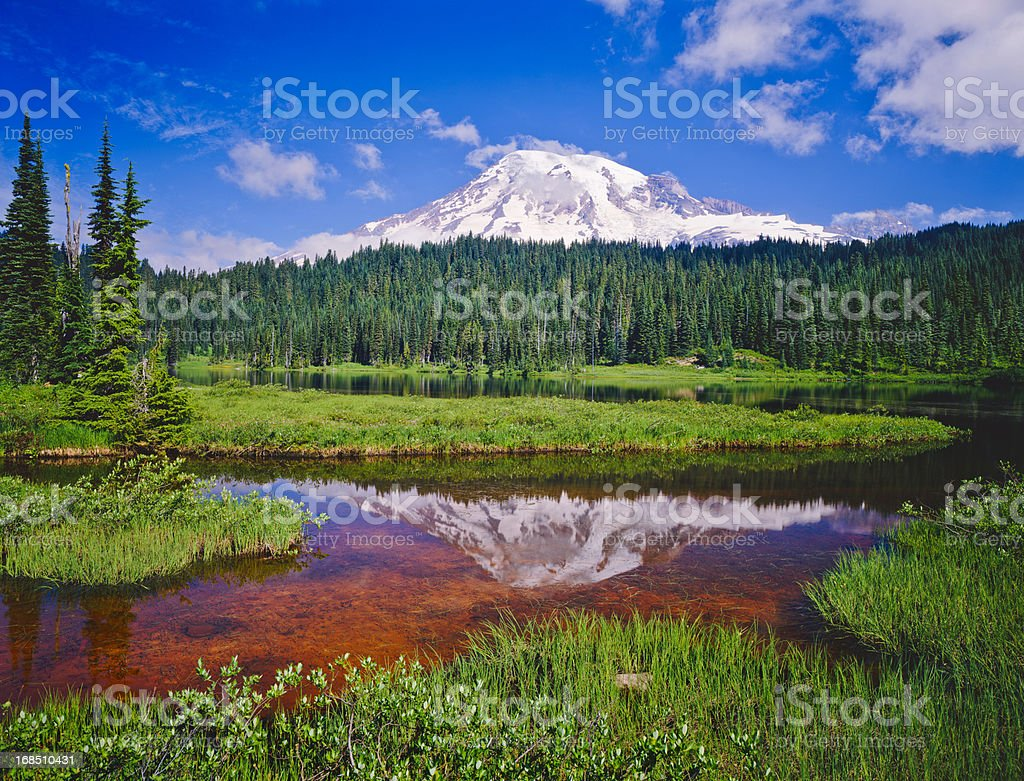 Mount Rainier National Park stock photo
