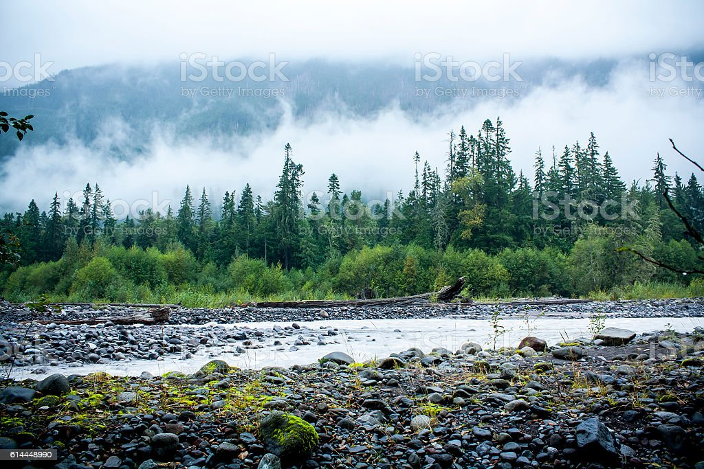 Mount Rainier National Park, Washington stock photo