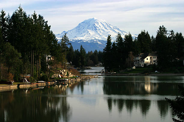 Mount Rainier Beautiful view on Mount Rainier with Forest Canyon in front. tacoma stock pictures, royalty-free photos & images