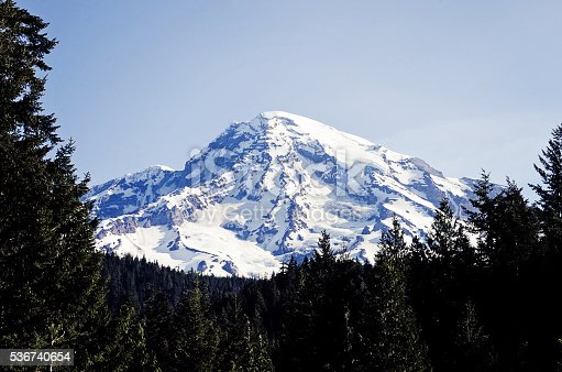 Mount Rainier framed by evergreen trees on a clear day in the Pacific Northwest.