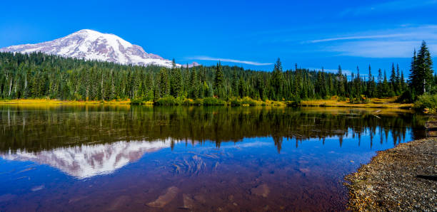 Mount Rainier Mount Rainier Reflections Lake reflection lake stock pictures, royalty-free photos & images