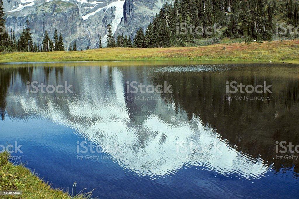 Mount Rainier Reflection royalty-free stock photo