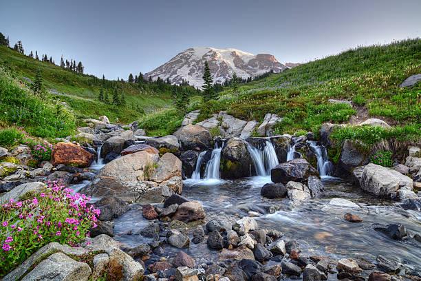 Mount Rainier Summer stock photo