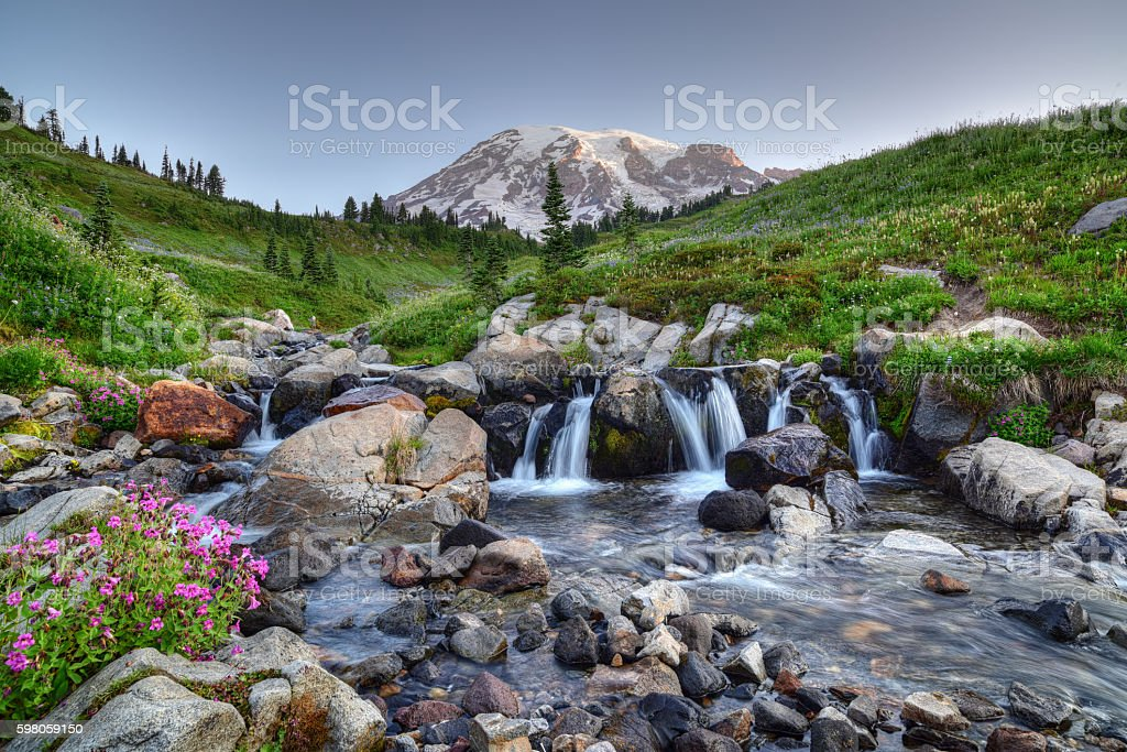 Mount Rainier Summer stock photo