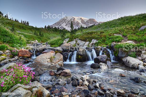 Photo of Mount Rainier Summer