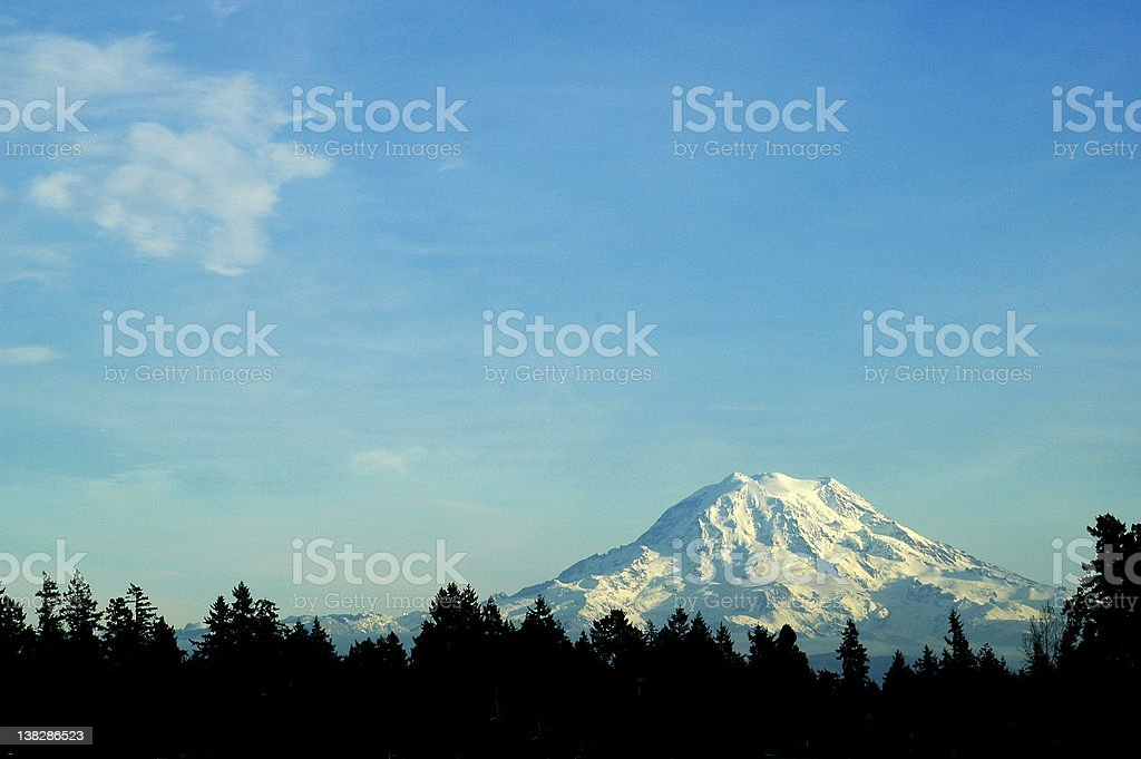 Mount rainier surrounded by the forest royalty-free stock photo