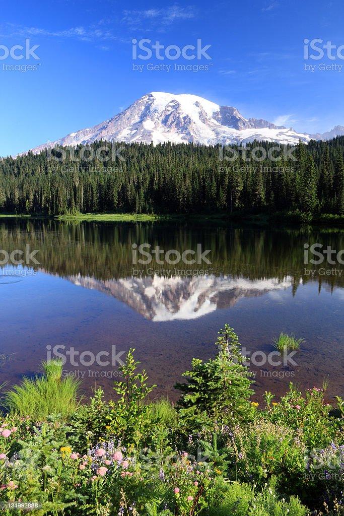 Mount Rainier, Washington State royalty-free stock photo