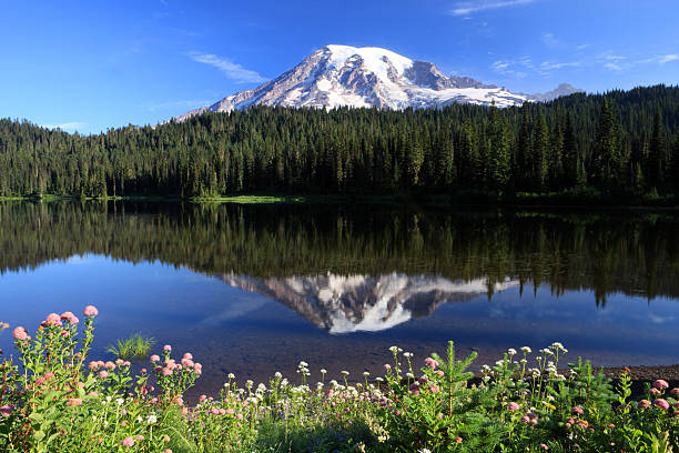 Mont Rainier, État de Washington - Photo
