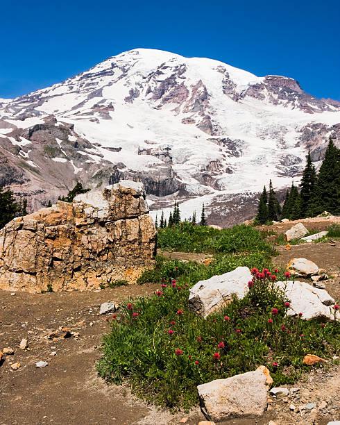 Mount Rainier...and Some Rocks stock photo