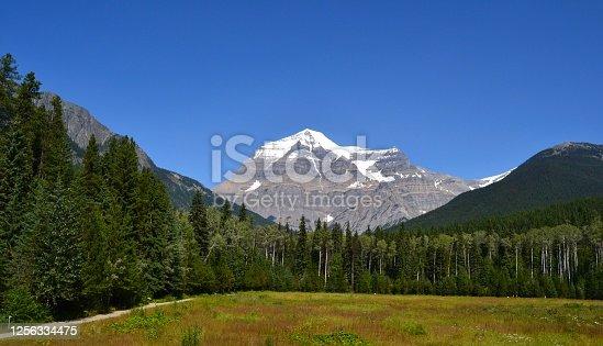 istock Mount Robson 1256334475