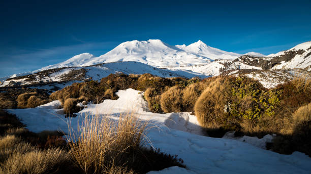 mount ruapehu, new zealand - nzgmw2017 stock pictures, royalty-free photos & images