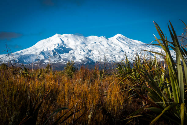 mount ruapehu - nzgmw2017 stock pictures, royalty-free photos & images