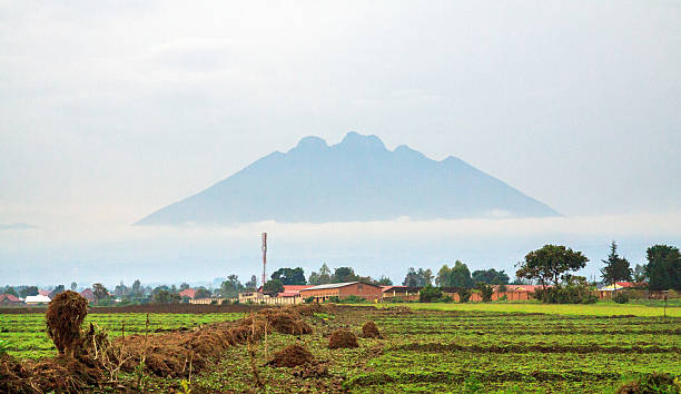 mount sabinyo volcano in early morning mist - demokratische republik kongo stock-fotos und bilder