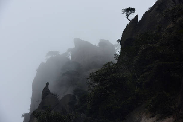 Mount Sanqingshan of China Mount Sanqingshan is Chinese Taoist mountains, located in Jiangxi province China. Peculiar shape, the nature of the bonsai.Nikon D810 camera. taoism stock pictures, royalty-free photos & images