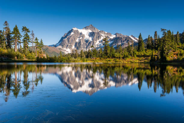 A montagem Shuksan reflete no lago Picture - foto de acervo