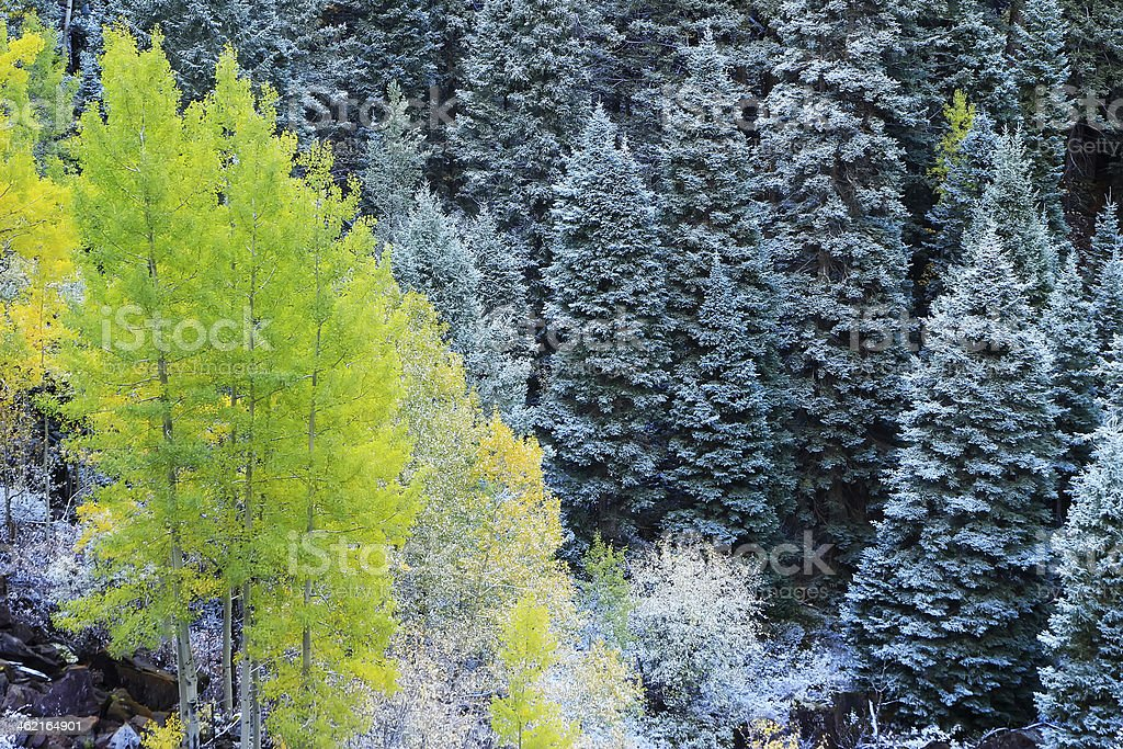 Mount Sneffels Range with fresh snow, Colorado stock photo
