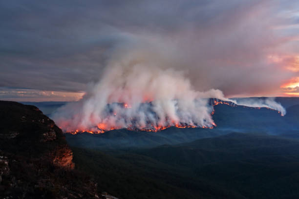 Mount Solitary burning in Blue Mountains, Australia Views of the bush fire at Mount Solitary in Blue Mountains after sunset at dusk light australia stock pictures, royalty-free photos & images