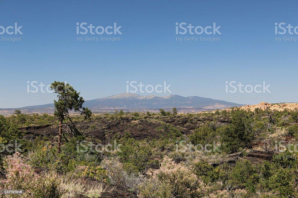 Mount Taylor stock photo