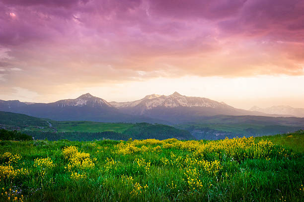 Mount Wilson Sunset Sunset over a Colorado meadow and Mount Wilson in Telluride, Colorado national forest stock pictures, royalty-free photos & images