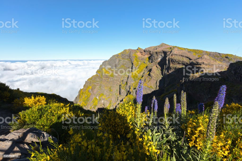 Mountail plateau above the clouds cover stock photo