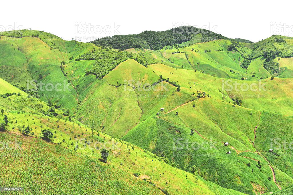 Mountain agriculture in Chaloem Phra Kiat district stock photo
