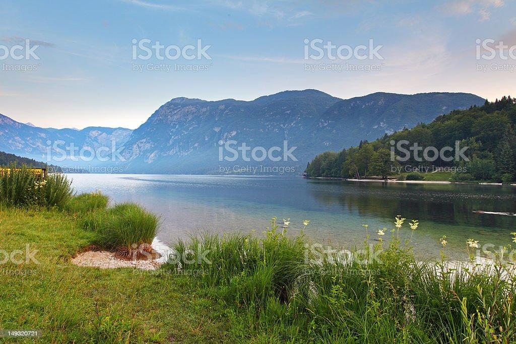 Mountain alp lake bohinj in Slovenia royalty-free stock photo